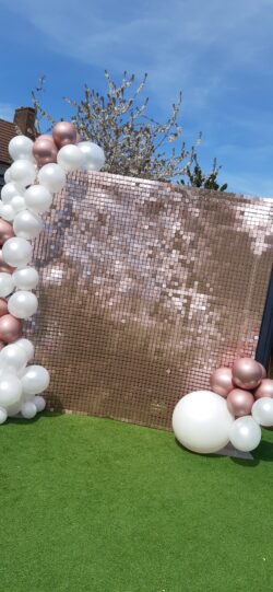 pink sequin Wall